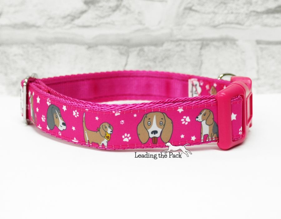 20/25mm doodle beagle collars & leads
