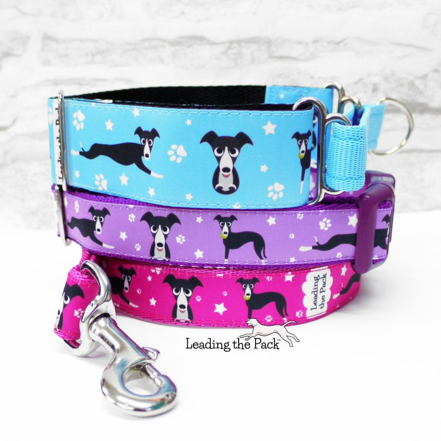20/25mm lurcher greyhound whippet collars & leads