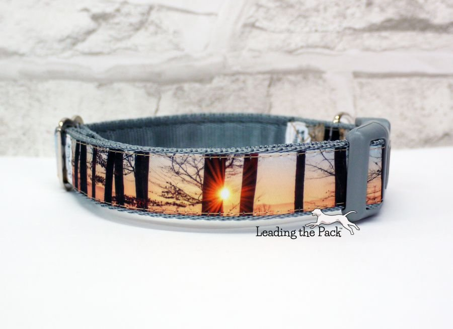 20/25mm sunset trees photo collars & leads