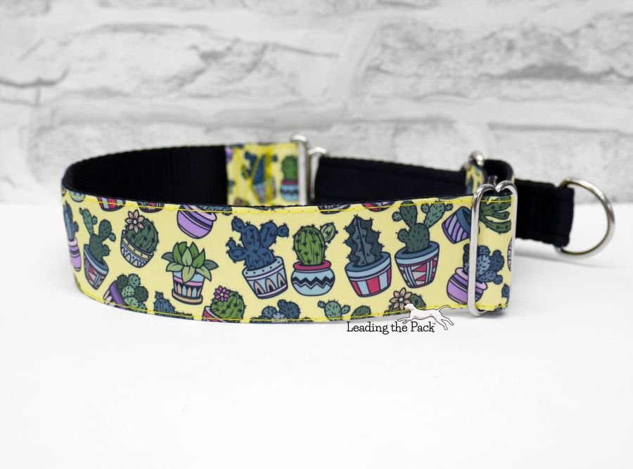40mm yellow cactus toss dog collars
