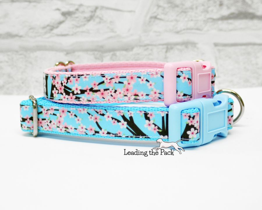 20/25mm cherry blossom collars & leads