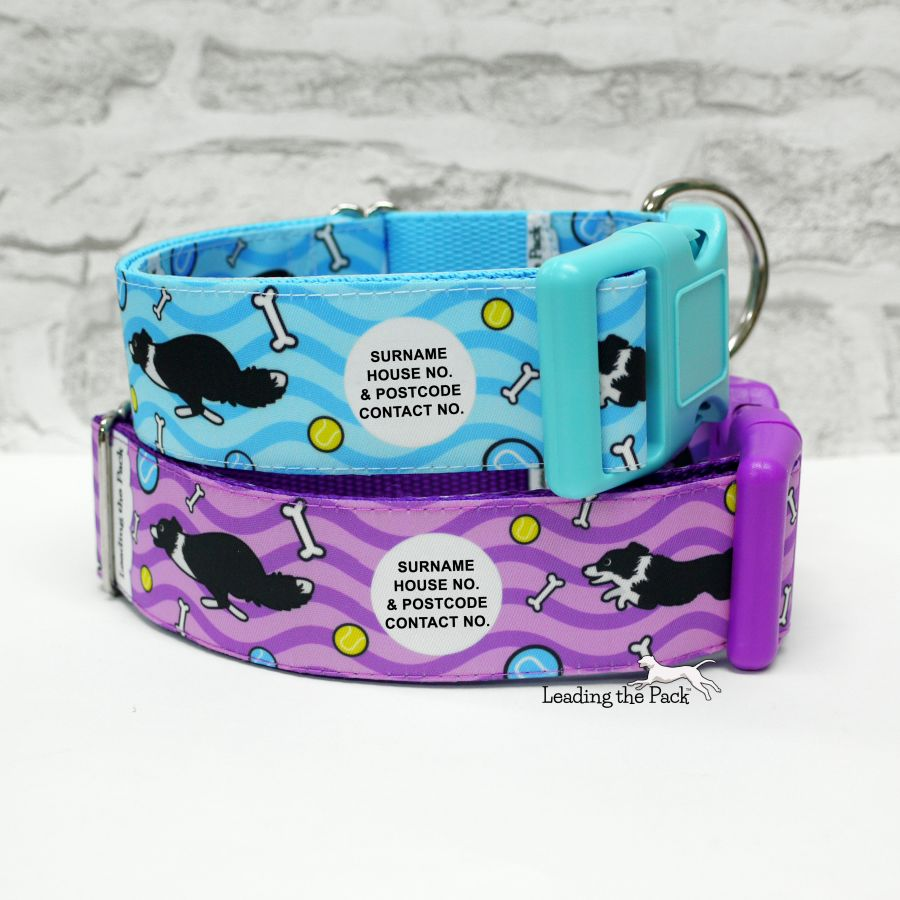 40mm personalised border collie collars