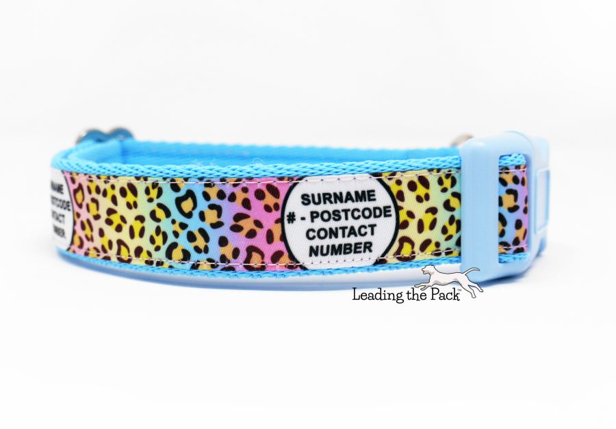 20/25mm personalised contact rainbow leopard collars & leads