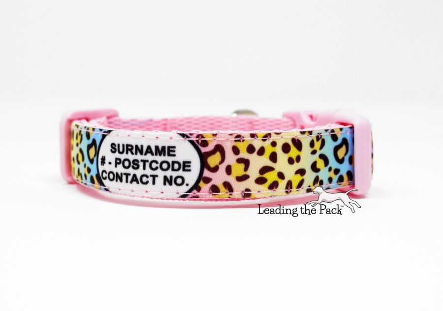 15mm personalised contact rainbow leopard collars & leads