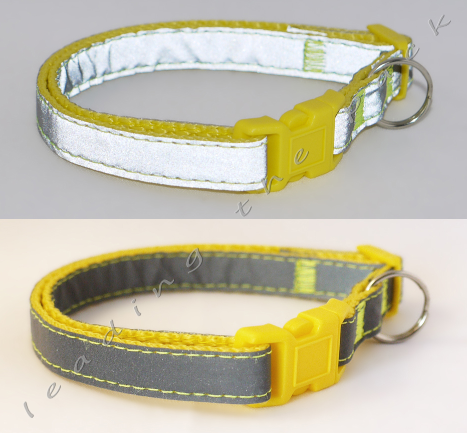 10mm full reflective collars & leads