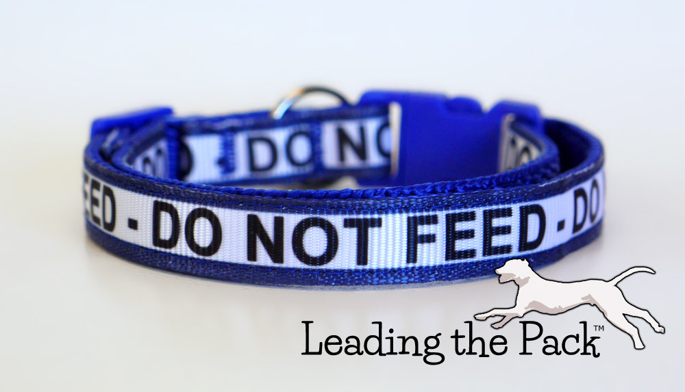 10mm DO NOT FEED cat collar