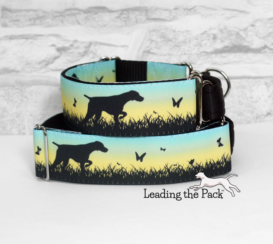 40mm Spring meadow pointer collars