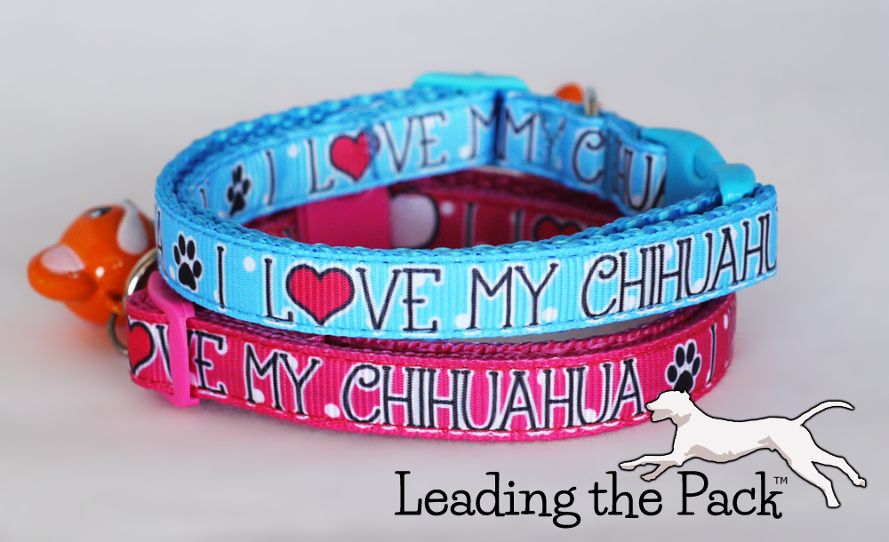 10mm I love my Chihuahua collars & leads