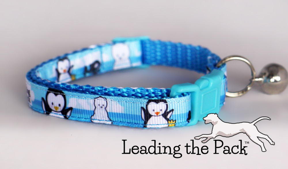 10mm Arctic friends collars & leads