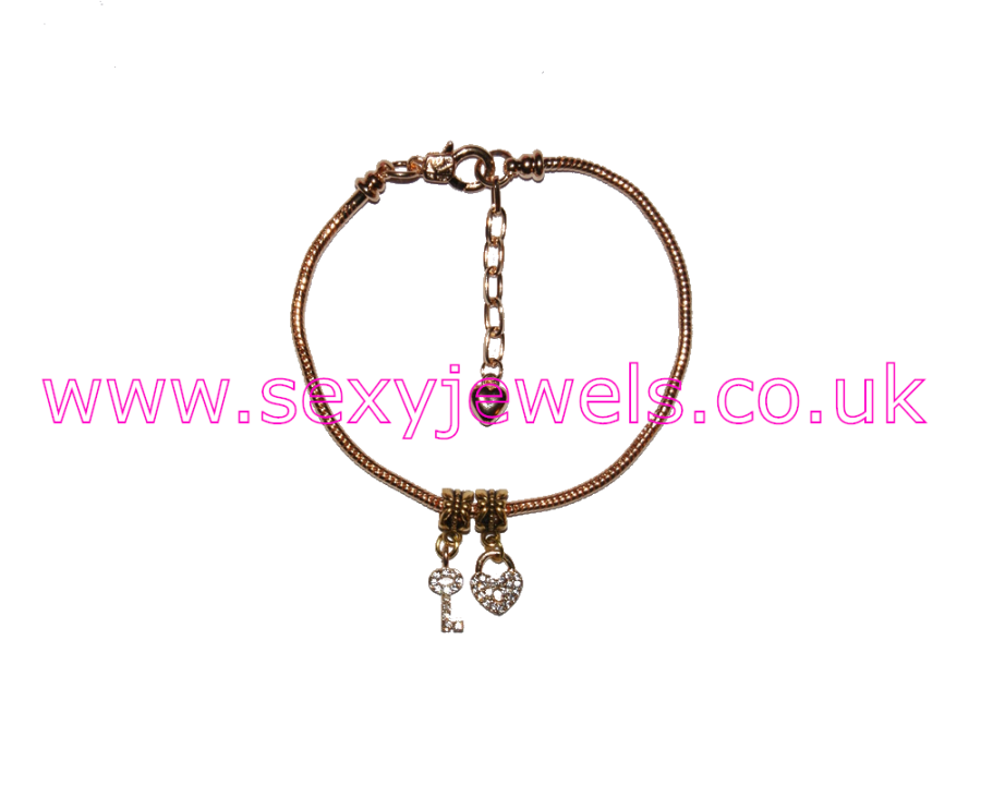 Euro Anklet / Ankle Chain Gold Lock and Key Mistress Keyholder and Chastity Meanings