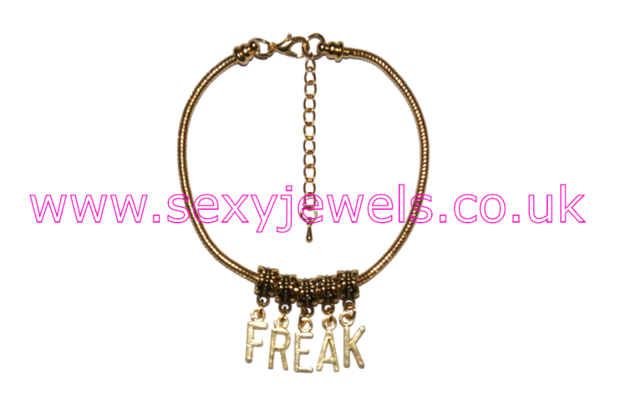 FREAK Gold Euro Anklet / Ankle Chain