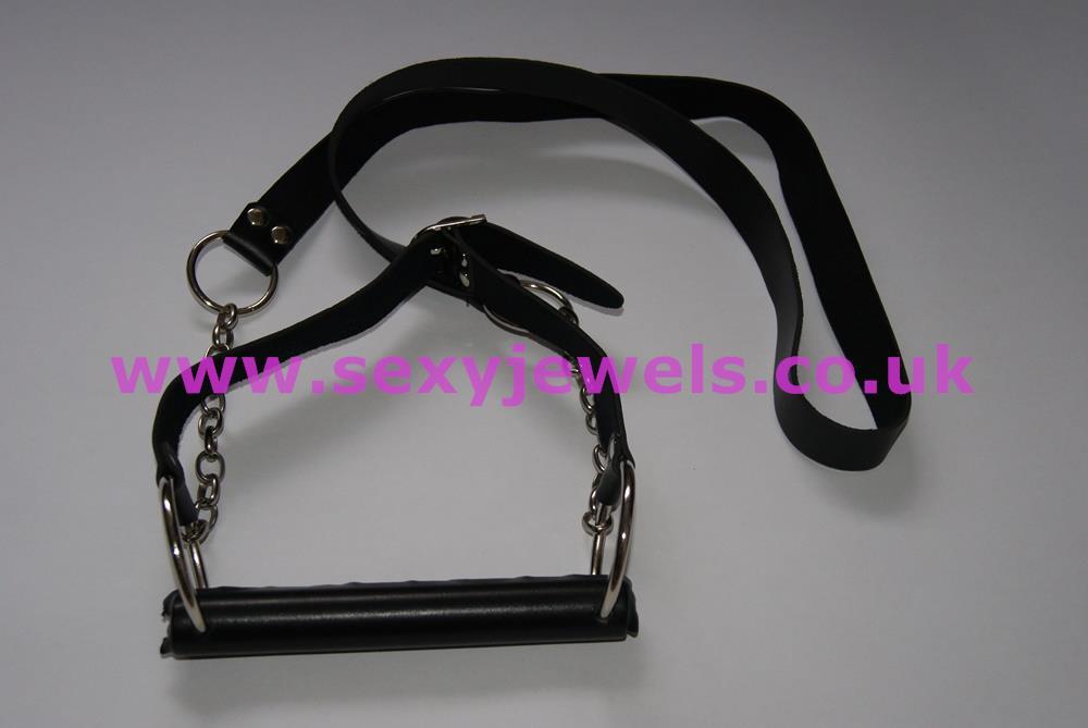 Bit Gag With Reins Pony Play Accessory