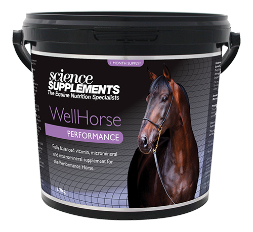 Science Supplements WellHorse Performance Horse Balancer