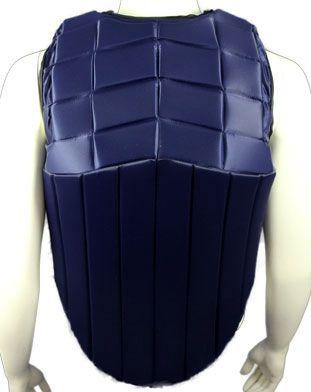 RaceSafe RS 2010 Body Protector Adults Standard Colours