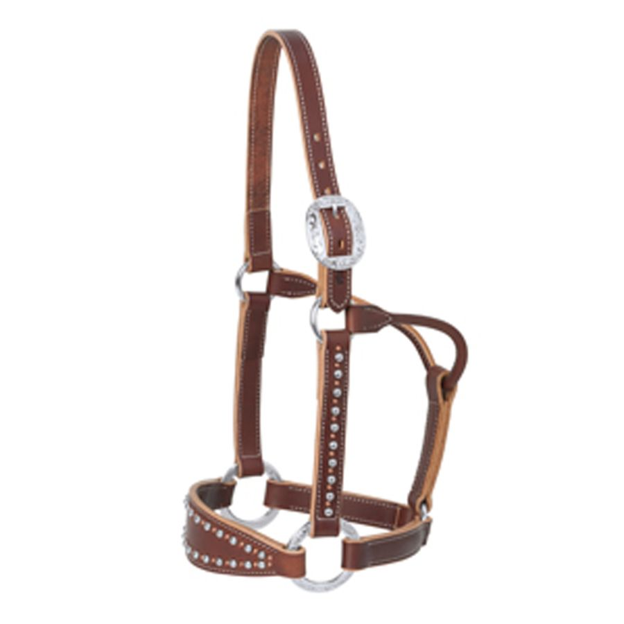 Weaver Leather Rock Star Bronc Halter