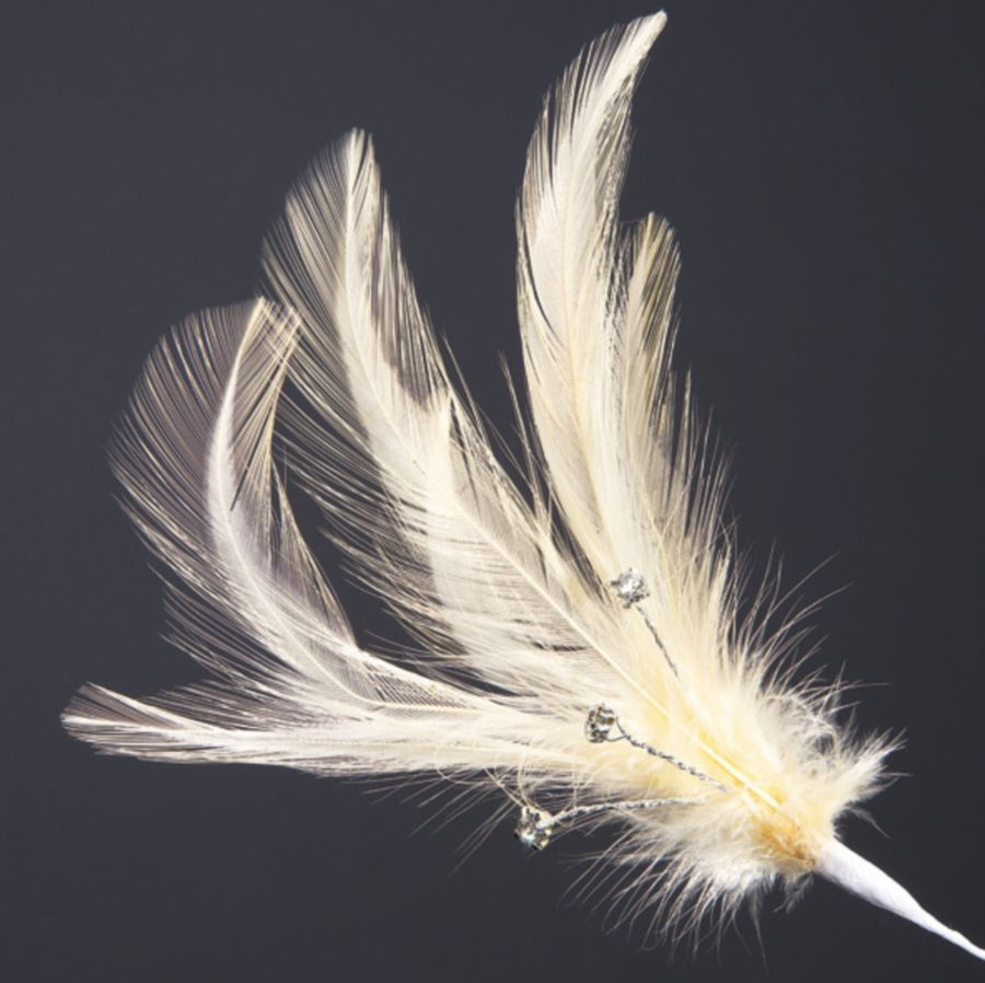 Champagne Feathers with Diamantés