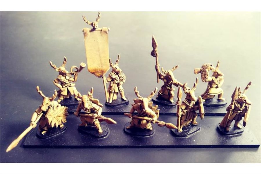 Wovian Spearmen with Shields (35 figures)