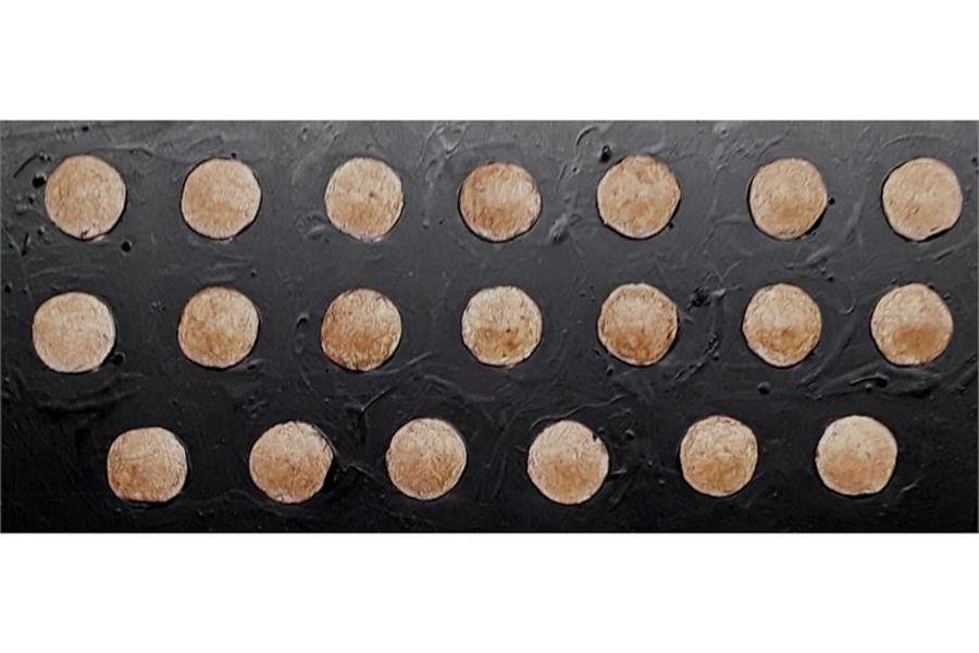 Delvian Lancer Shield (20 Shields)