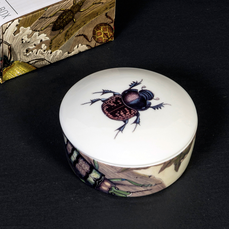Beetle trinket box