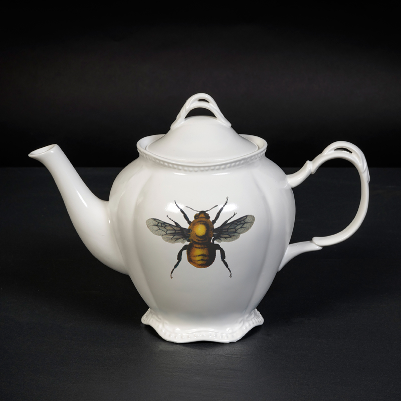 Insect design teapot
