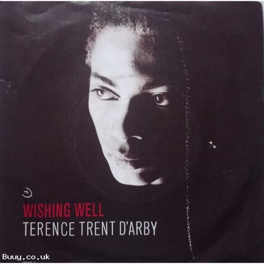Terence Trent D'arby - Wishing Well - Vinyl Record 7