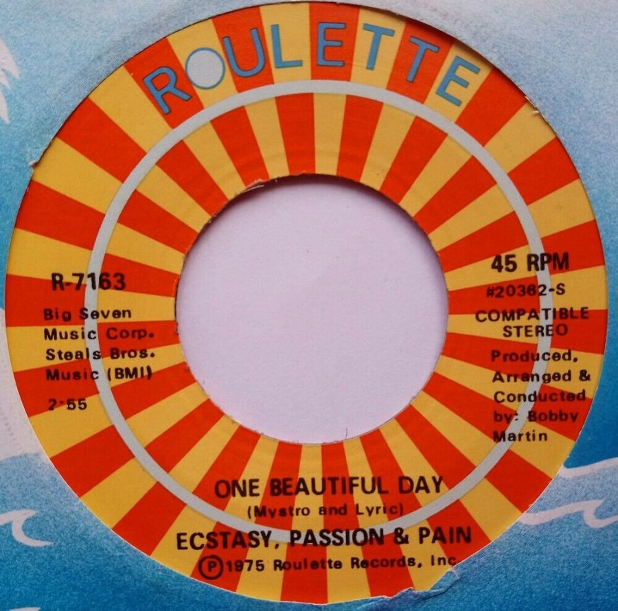 Ecstasy Passion & Pain - One Beautiful Day - Vinyl Record 7