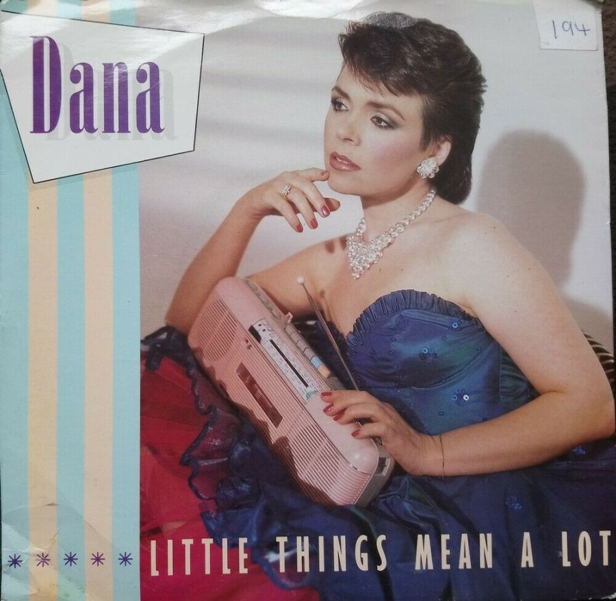 Dana - Little Things Mean A Lot - Vinyl Record 7