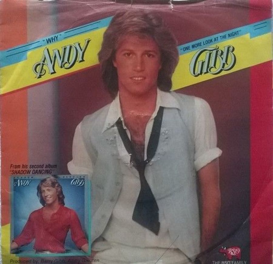 Andy Gibb - Why - 7