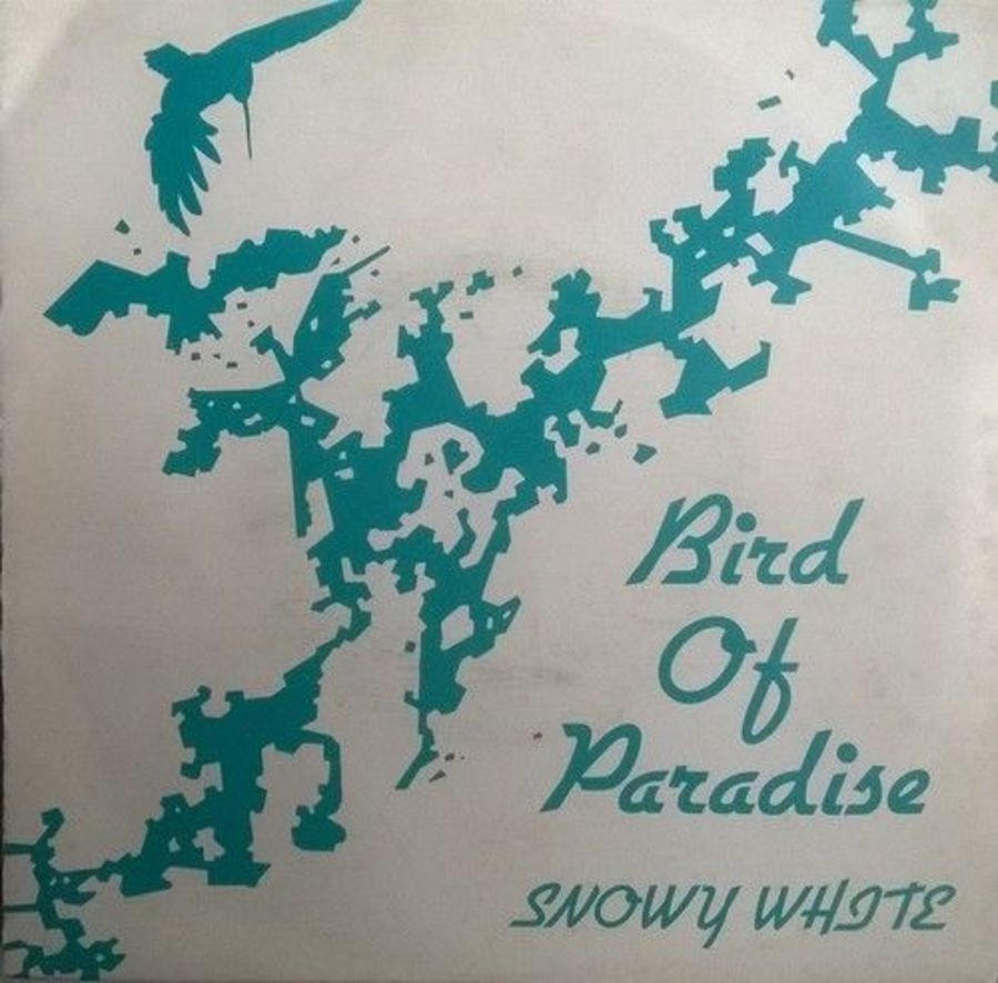 Snowy White - Bird Of Paradise - 7
