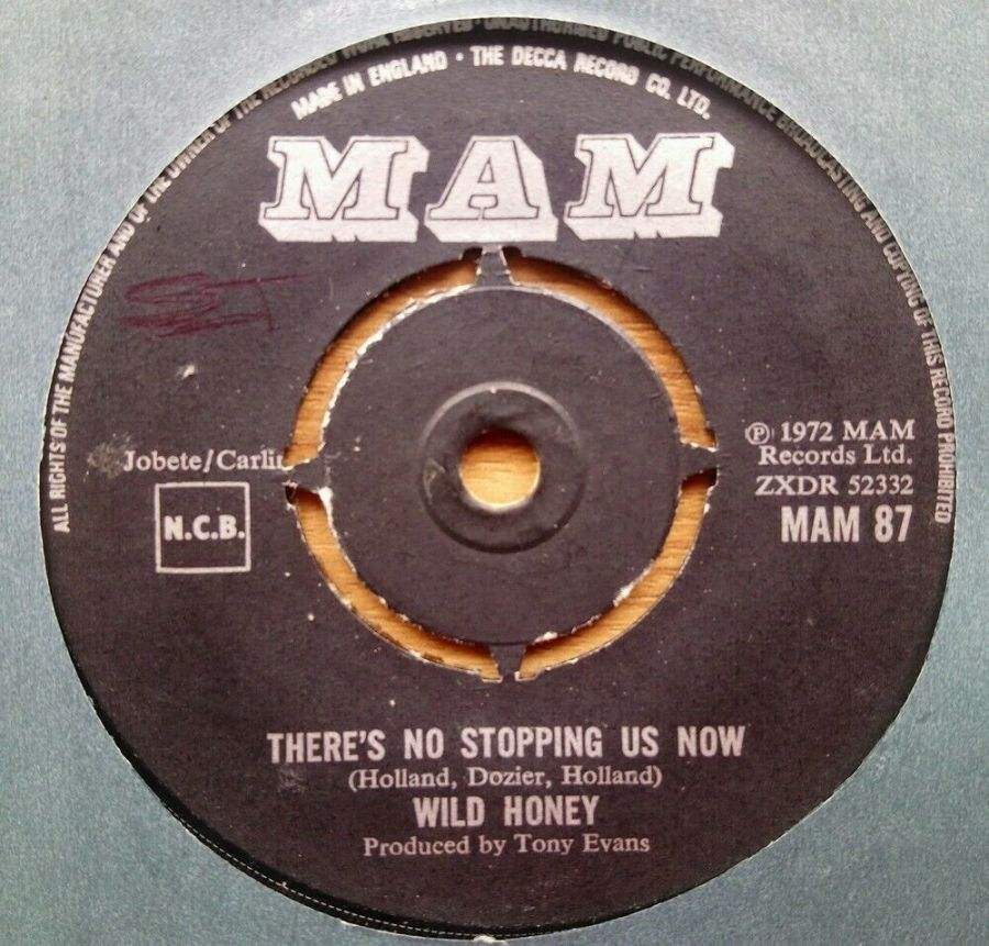 Wild Honey - There's No Stopping Us Now - 7