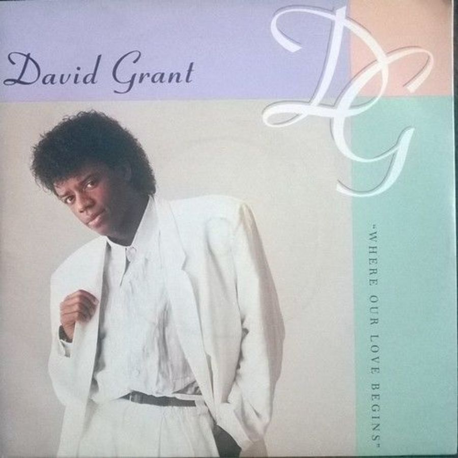 David Grant - Where Our Love Begins - Vinyl Record
