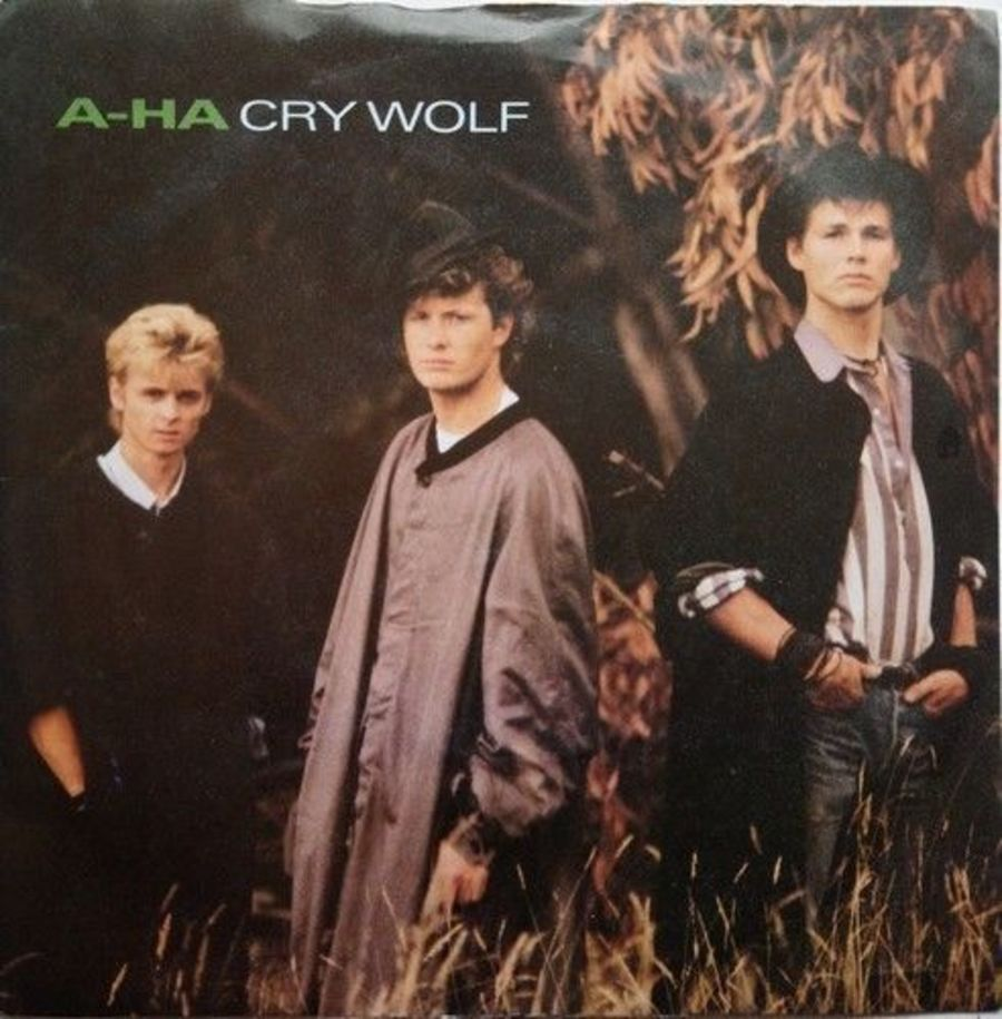 A-Ha - Cry Wolf - Vinyl Record 7