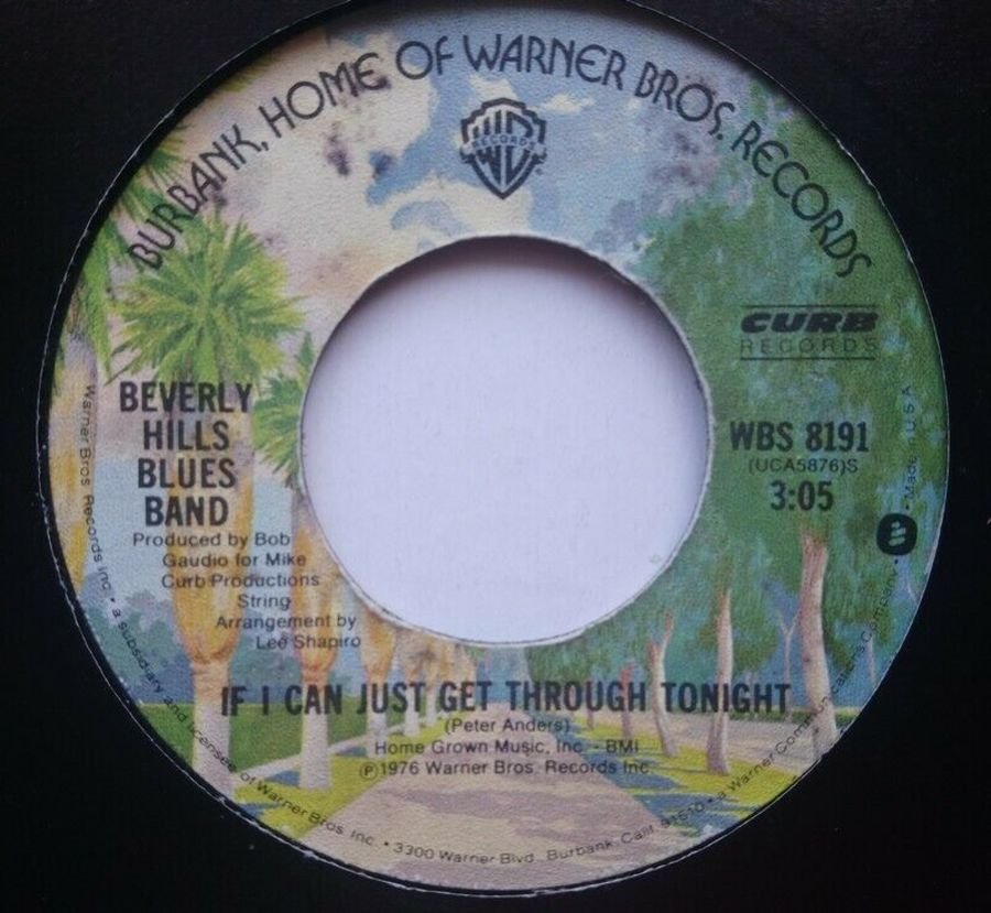 Beverly Hills Blues Band - If I Can Just Get Through - 7