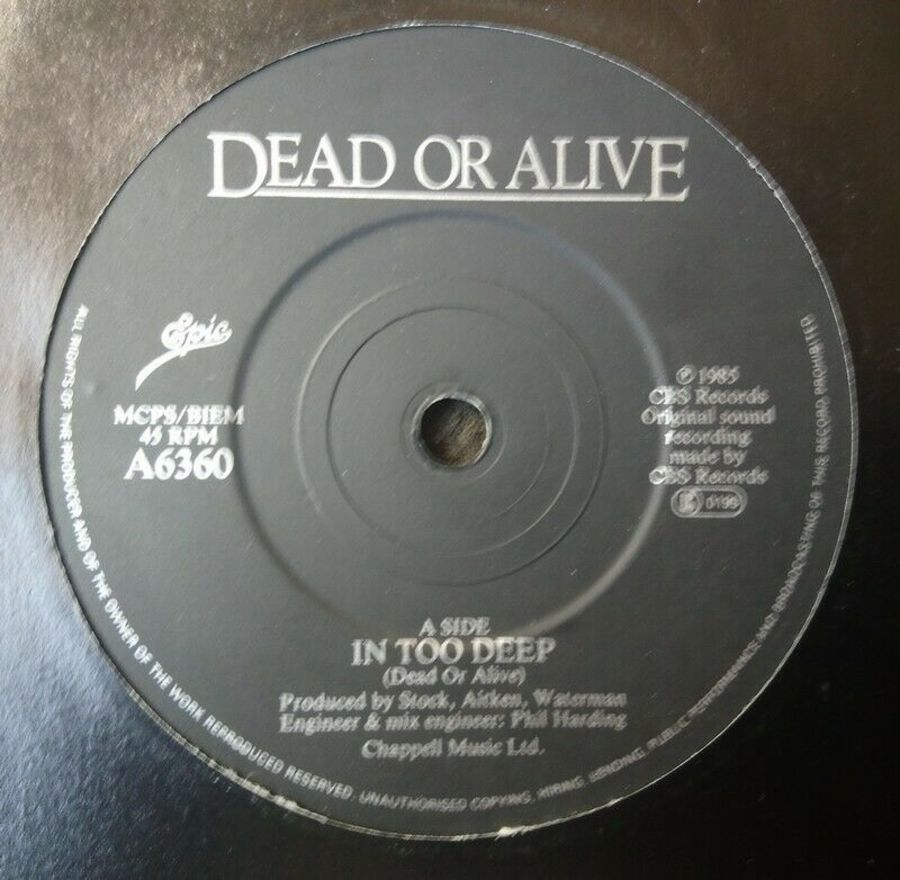 Dead Or Alive - In Too Deep - 7