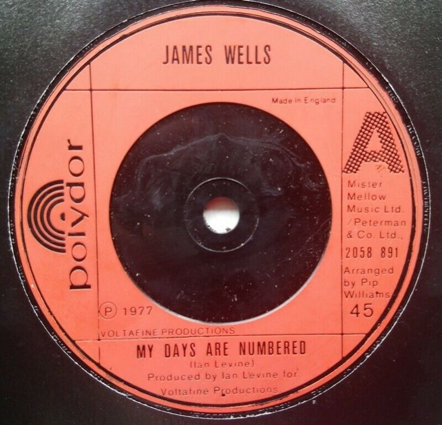 James Wells - My Days Are Numbered - 7