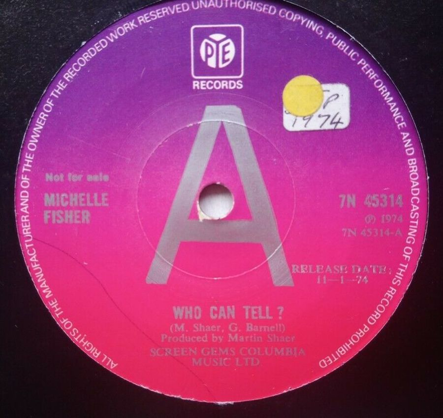 Michelle Fisher - Who Can Tell? - Vinyl Record - 45 RPM ( DEMO )
