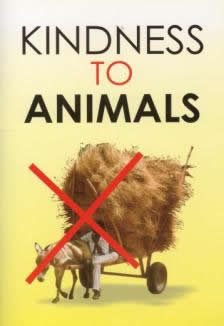 Kindness to Animals by Darussalam Publishers