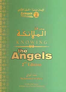 Knowing the Angels