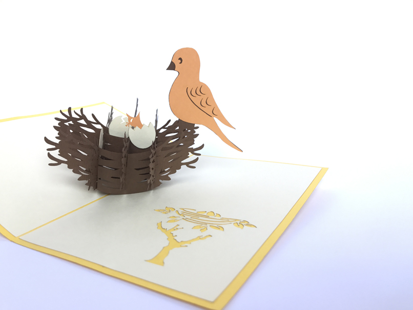 Bird Nest Pop Up Card