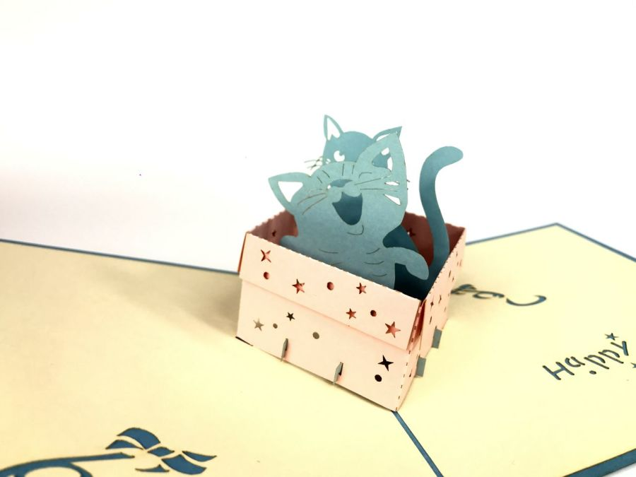 Blue Cat In Box Pop Up Card