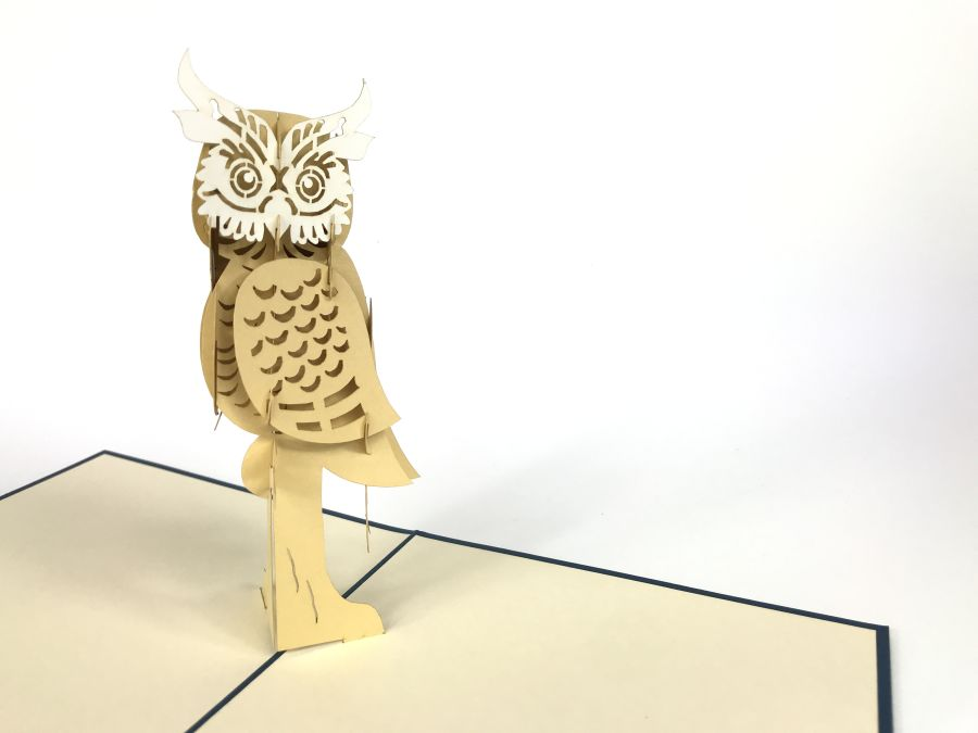Old Owl Pop Up Card