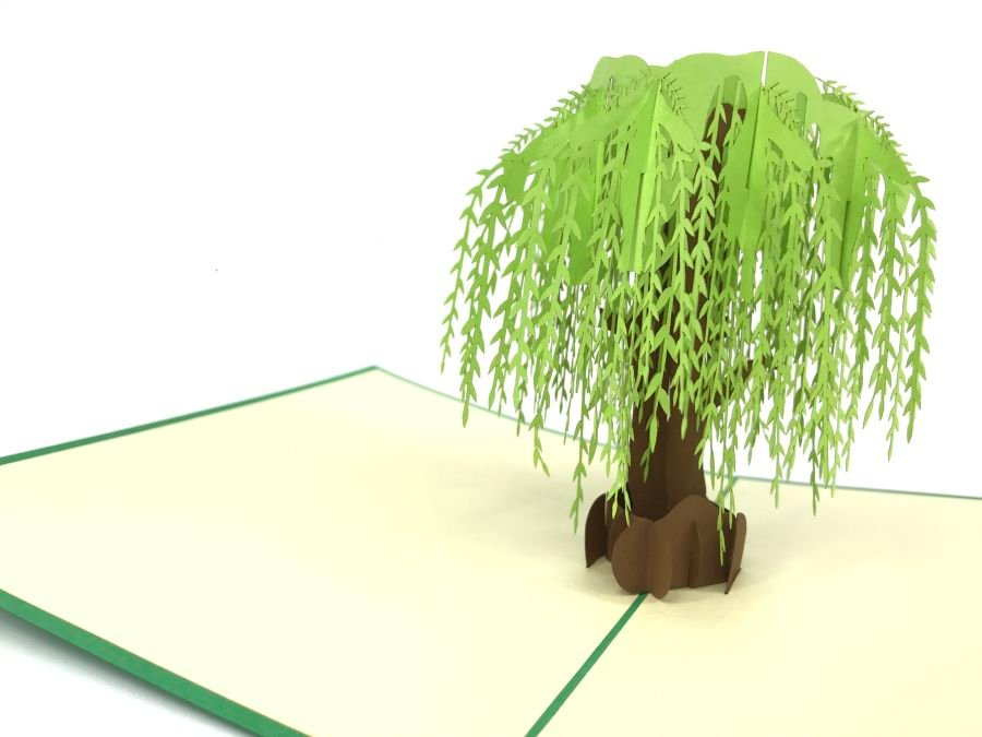 Big Willow Tree Pop Up Card