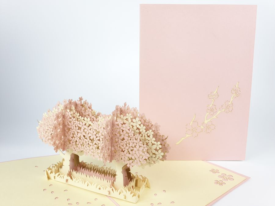 Twin Cherry Blossom Pop Up Card