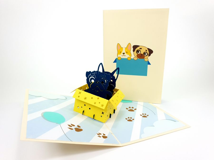 Dog in Box Pop Up Card