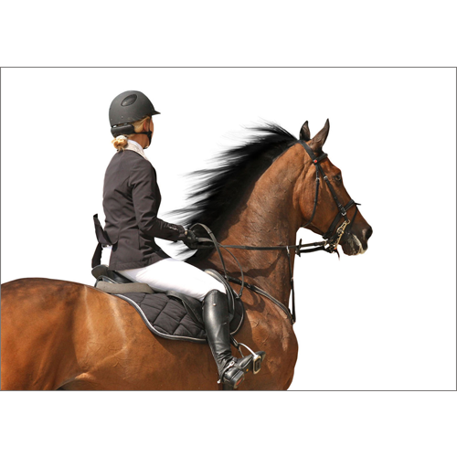 Eventing Girl