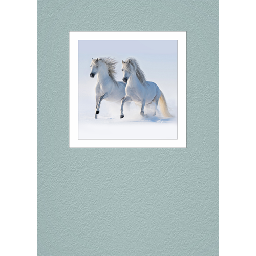 Two Grays