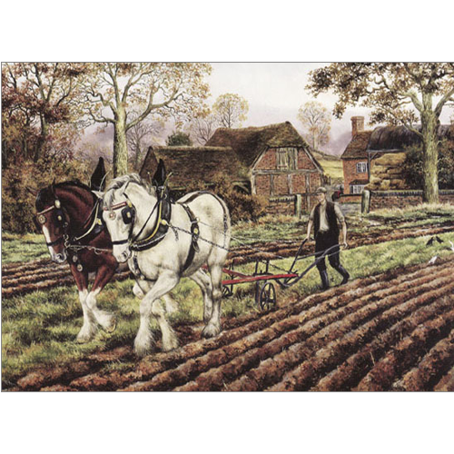 Ploughing Time