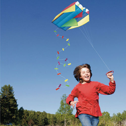 Easy to Fly Pocket Kite in a Bag