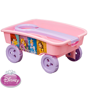Disney Princess Craft Caddy