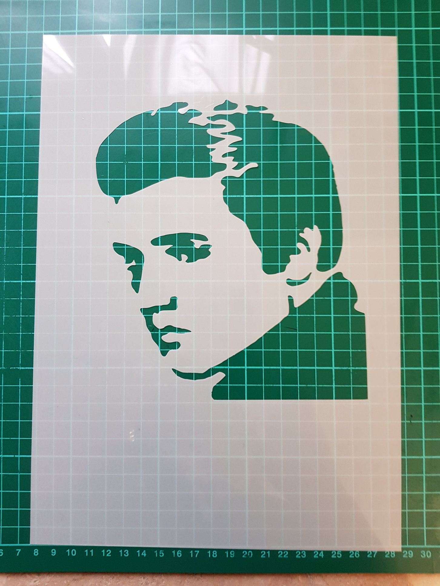 Elvis head stencil  cake decorating